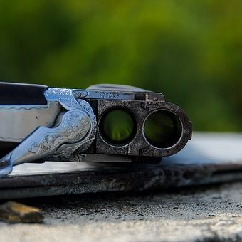 rifle-2043676__340